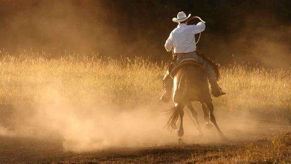 Cowboy roping at sunset, slow motion Royalty-free stock video