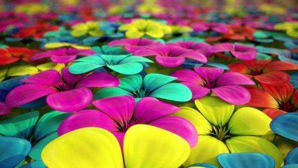 Flyover above field of colorful flowers, CGI Royalty-free stock video