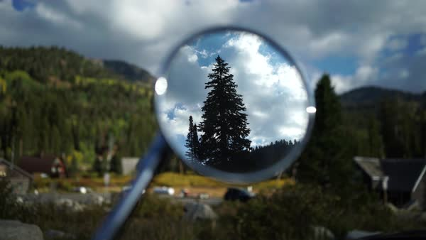 Close-up of pine tree reflection in a motorcycle's rear view mirror Royalty-free stock video