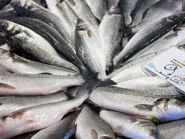 Close up of a market stall and fresh produce fresh fish for Fish stocking prices