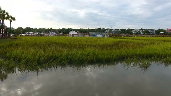 Aerial of Wet Grass Lands in Charleston South Carolina stock footage