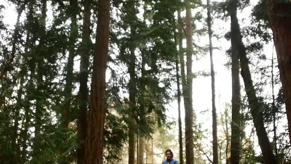 Slow motion shot of a woman running in a forest Royalty-free stock video