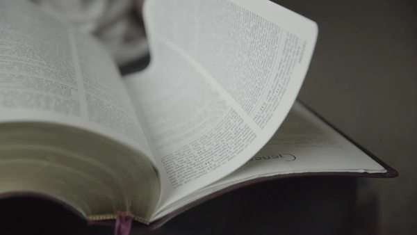 Close-up shot of a person turning pages in a book Royalty-free stock video