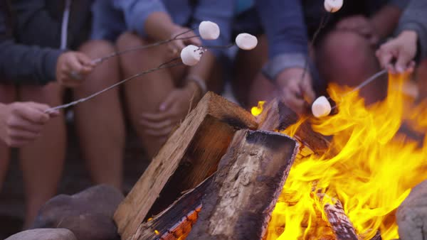 Group of friends at beach roasting marshmallows on fire, closeup Royalty-free stock video