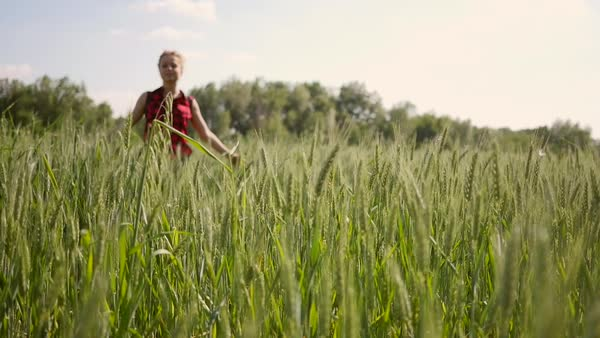 Head on shot of a woman walking in a field in Verona, Italy in slow motion Royalty-free stock video