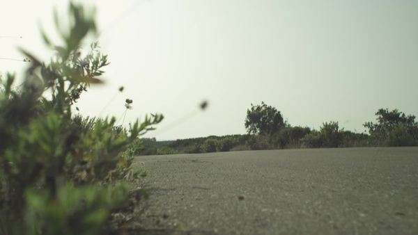 Low angle shot of bushes next to road with passing motorcyclist Royalty-free stock video