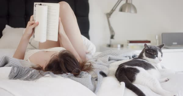 Medium shot of a woman reading in bed Royalty-free stock video