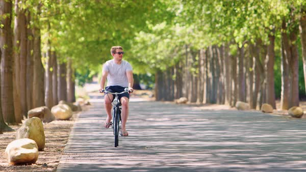 Young white man riding bike on a tree lined road stock footage