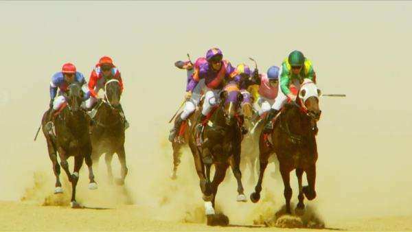 Handheld shot showing jockeys riding horses in equestrian competition Rights-managed stock video