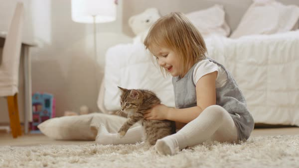 Cute little girl sits on the floor and happily holds her favourite striped kitten. Slow motion. Royalty-free stock video