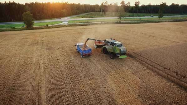 Aerial drone shot of a combine harvester loading a truck in a field at sunset. Royalty-free stock video