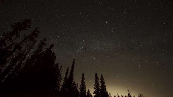 Astro timelapse in a forest Royalty-free stock video