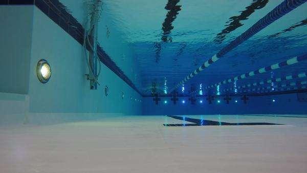Underwater low shot of man swimming in clean swimming pool - Stock ...