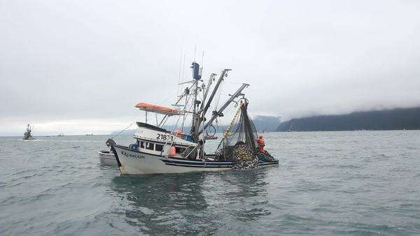 Water Boat Fishing Alaska  Fishing boats off of Alaskan coast in freezing  cold waters pulling in crab filled nets  stock footage