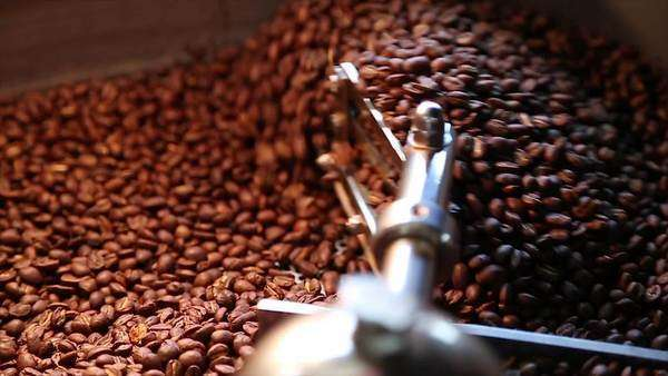 Medium shot of coffee fresh out of the roaster Royalty-free stock video
