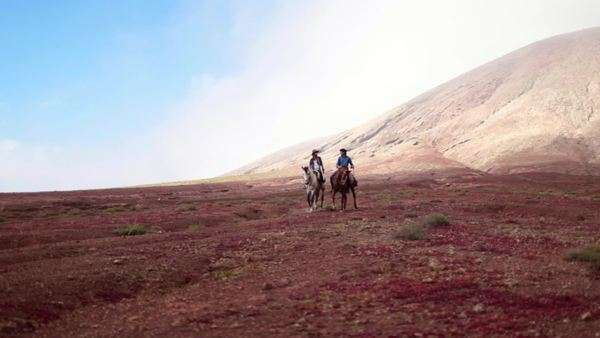 Young couple riding horses in the desert Royalty-free stock video