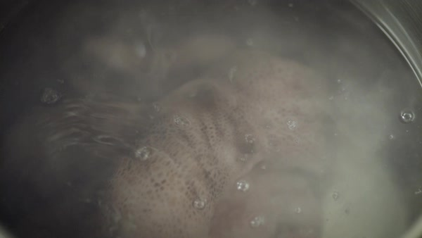 Static shot of an octopus in boiling water Royalty-free stock video