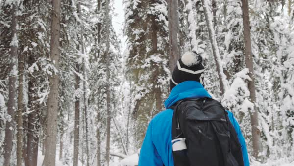 Medium shot of a man hiking in a snowy forest in Johnston Canyon Royalty-free stock video