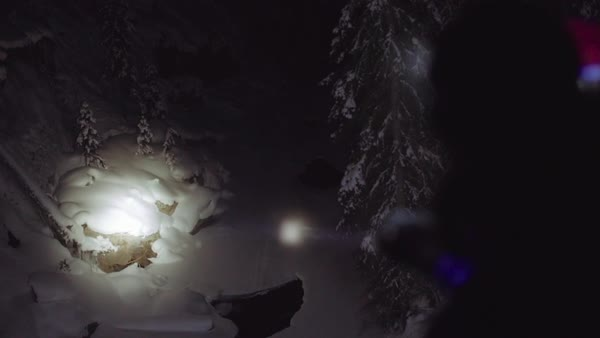 Medium shot of a person using a flashlight in a dark forest Royalty-free stock video