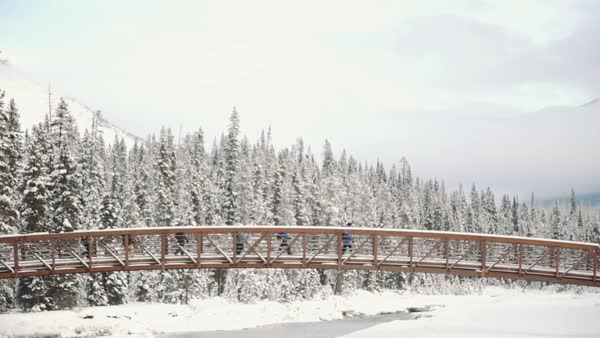 Wide-angle shot of hikers crossing a bridge in winter Royalty-free stock video
