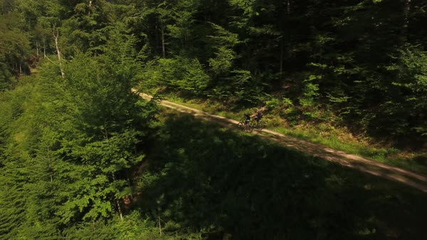Wide shot of two mountain bikers passing forest path Royalty-free stock video