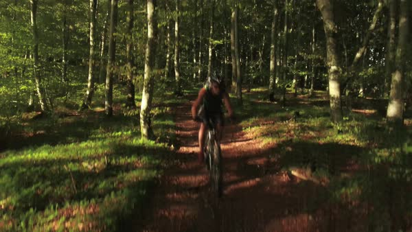 Wide shot of two mountain bikers passing a path in dark dense forest Royalty-free stock video