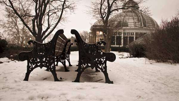 Motion timelapse of benches in a park during a cold and snowy day Royalty-free stock video