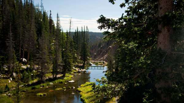 Motion control timelapse tracking from behind a tree to reveal a scenic pond and bridge near Mirror Lake Captured in the Snowy Range Mountain, Wyoming Royalty-free stock video