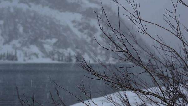 Snow falls on barren branches in the mountains beside a lake Royalty-free stock video