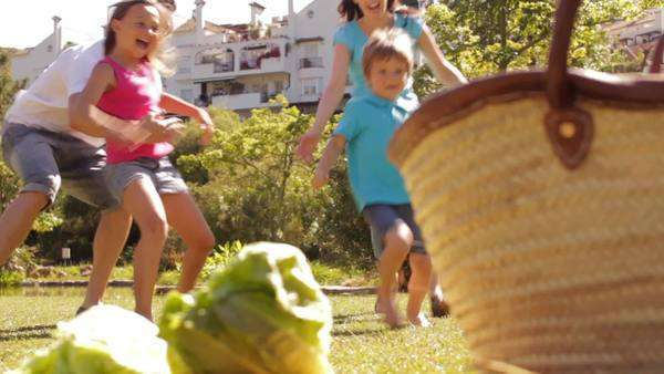 Dolly shot of family in park running towards picnic basket and twirling round. Royalty-free stock video