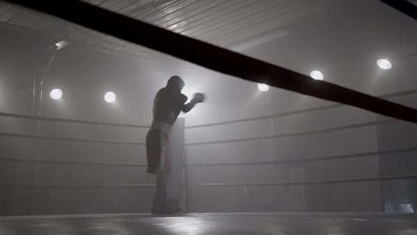 Portrait of boxer in ring Royalty-free stock video
