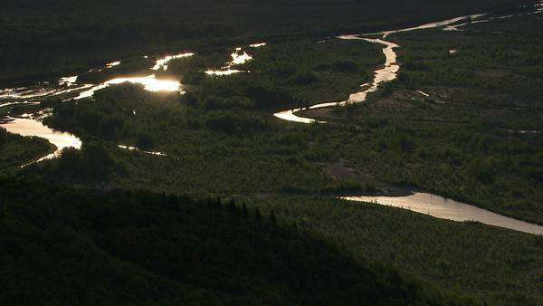 Sun reflects of streams in Alaskan wilderness Royalty-free stock video