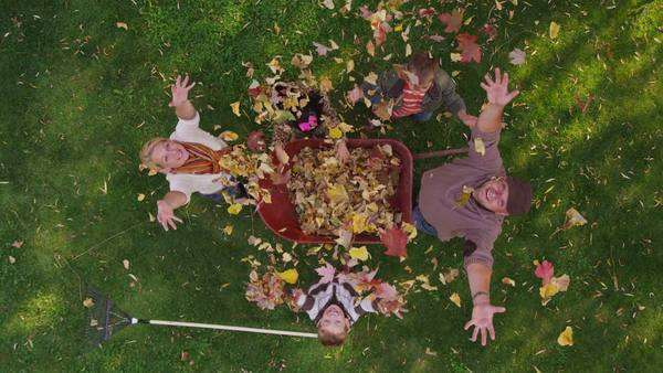 Family playing with autumn leaves. Overhead shot. Royalty-free stock video