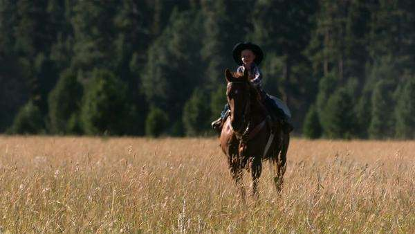 Young cowboy riding horse, slow motion Royalty-free stock video