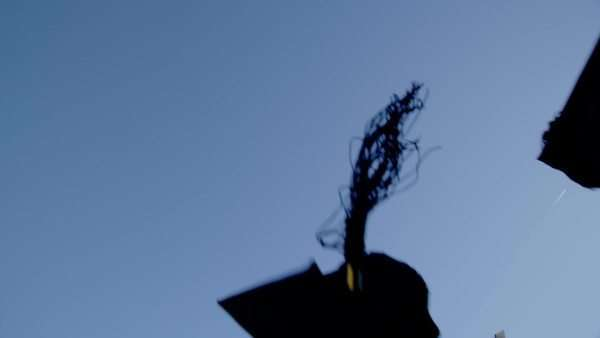 Graduation caps are tossed into the air on a bright sunny day and then fall out of shot. can be seen. In slow motion. Royalty-free stock video