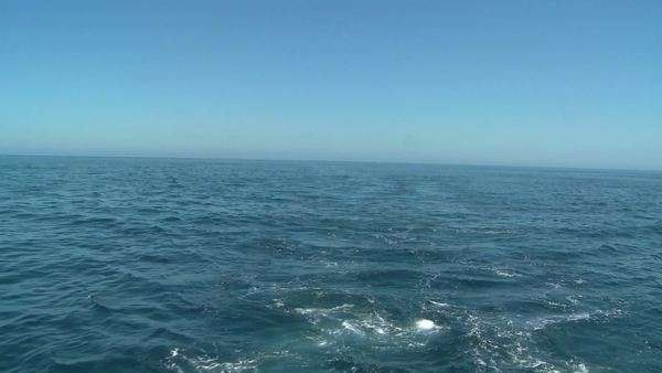 A shot of the open ocean. Royalty-free stock video