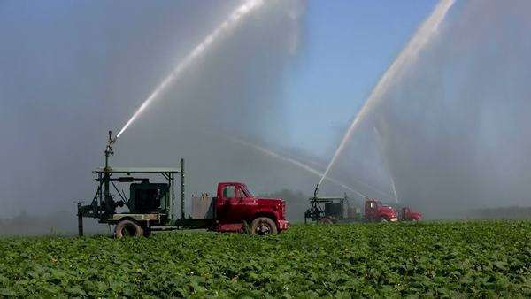 Irrigation trucks water fields. Royalty-free stock video