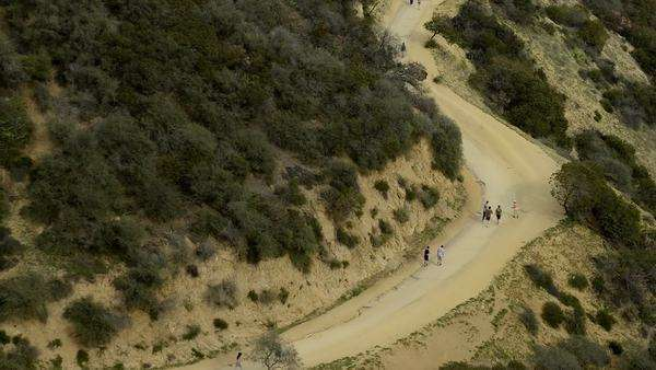 Runyon Canyon Los Angeles Royalty-free stock video