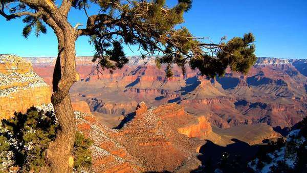 Panoramic views of Grand Canyon, Arizona Royalty-free stock video