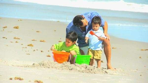 Latin American happy young dad walking cute young sons by ocean shallows outing to beach playing sand buckets Royalty-free stock video