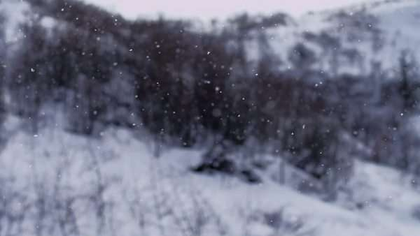 Static shot of snowflakes flying Royalty-free stock video