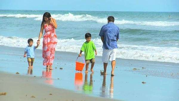 Latin American happy parents walking cute young sons by ocean shallows outing to beach carrying sand buckets. Royalty-free stock video
