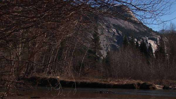 A look at bare trees and rocks with a  stream rushing through the foreground. Royalty-free stock video