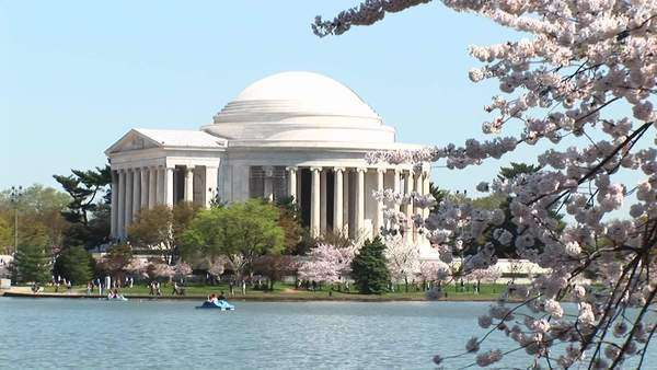 A long shot of the beautiful Jefferson Memorial building in Washington, D.C. Royalty-free stock video