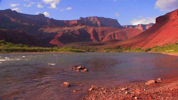 The Colorado River flows through a beautiful stretch of the Grand Canyon. Royalty-free stock video