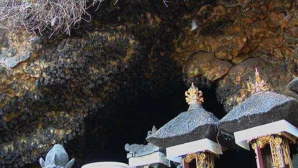 Bats Hang On The Walls At The Pura Goa Lawah 506501 0249