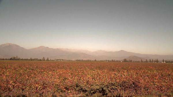 View from a train of the Central Valley wine country south of Santiago Chile. Royalty-free stock video