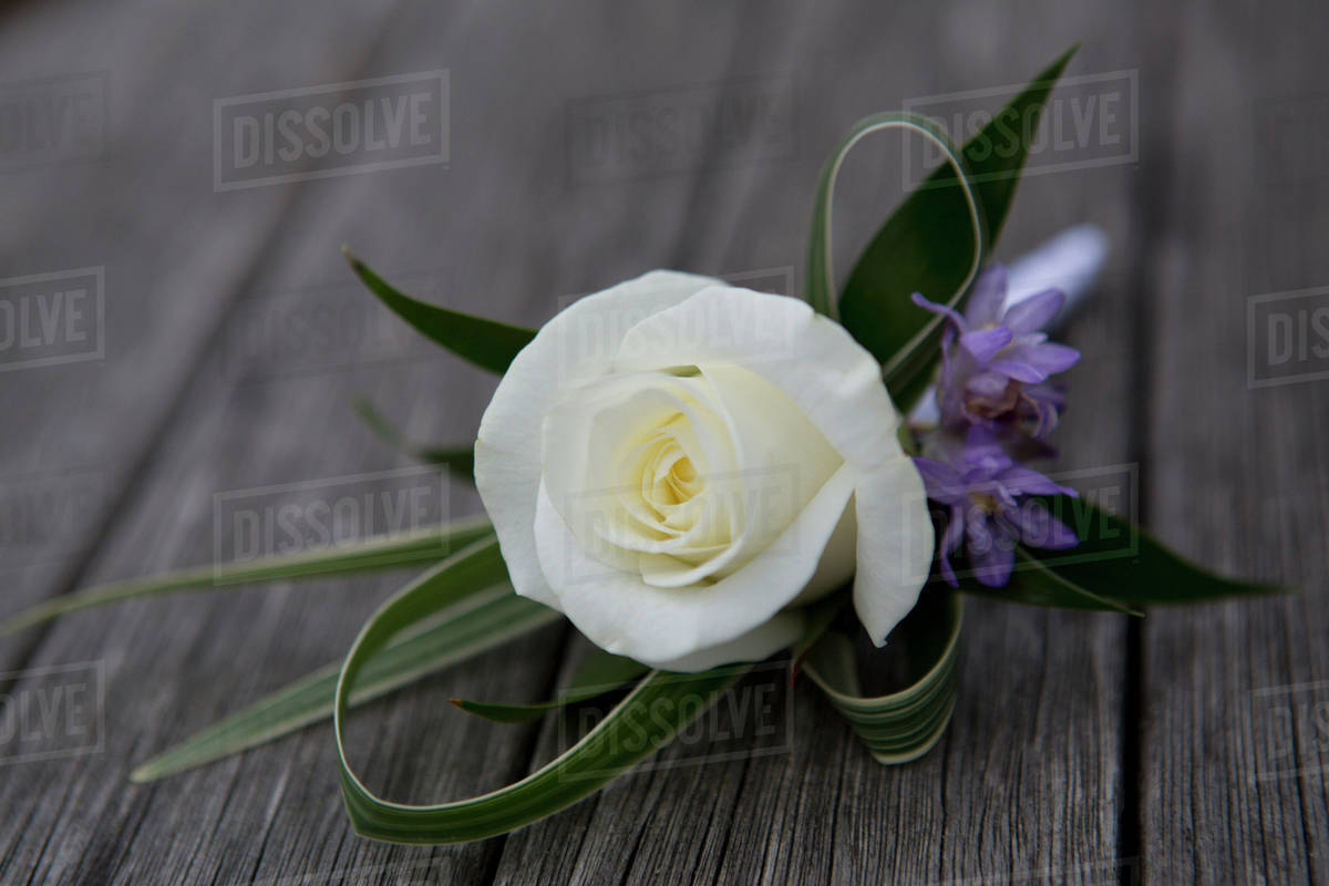 A Boutonniere On Hole Flower White Rose