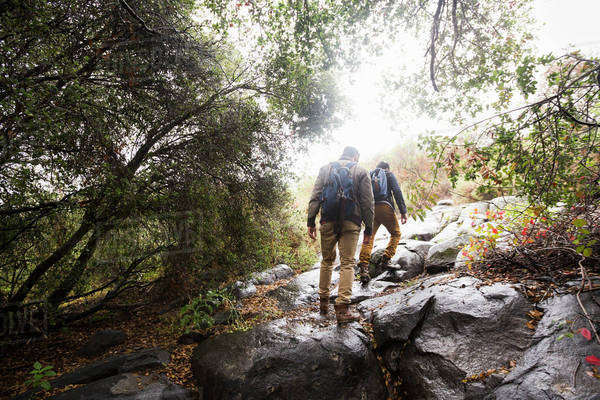 Two young men carrying backpacks hiking. Royalty-free stock photo