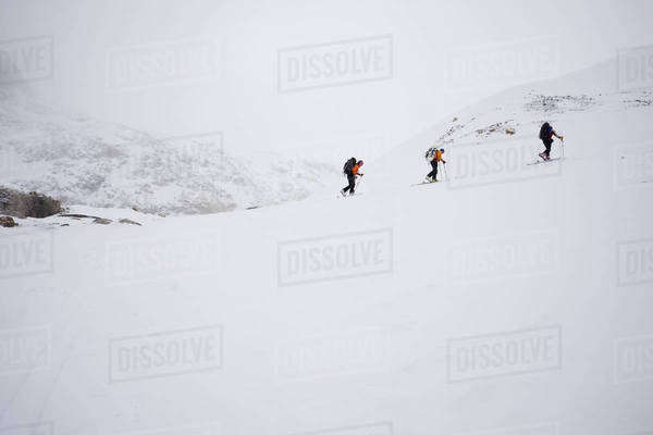 Three skiers ascending a ridge in mist and cloud conditions on the Wapta Traverse, a mountain hut to hut ski tour in Alberta, Canada.  Royalty-free stock photo